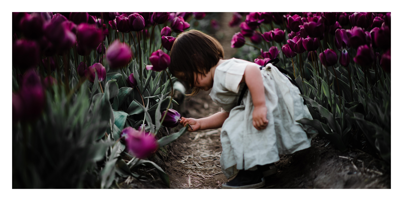 Amsterdam Portrait photography keukenhof tulips